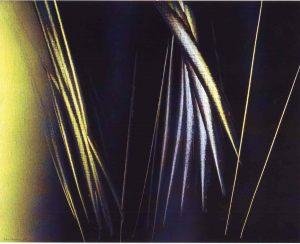 Hans Hartung, T1967-H17, 1967, acrilico su tela, cm 65×81